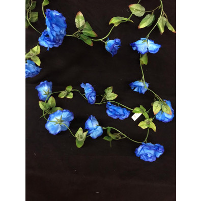 Guia de Rosa Grande Azul