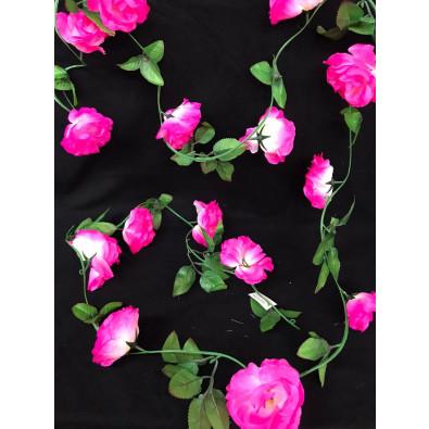 Guia de Rosa Neon