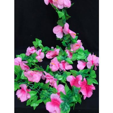 Guia de azalea rosa