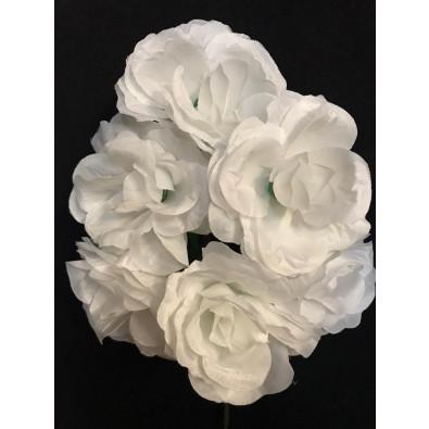 Docena de rosas blanco