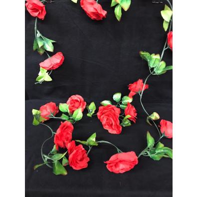 Guia de rosa grande rojo