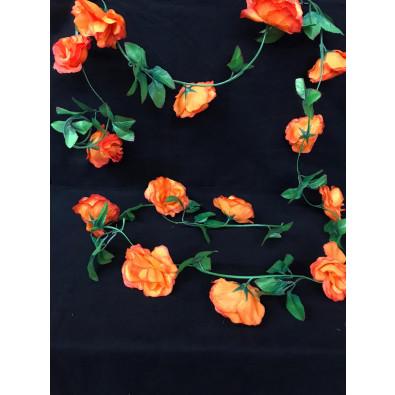 Guia de rosa grande naranja