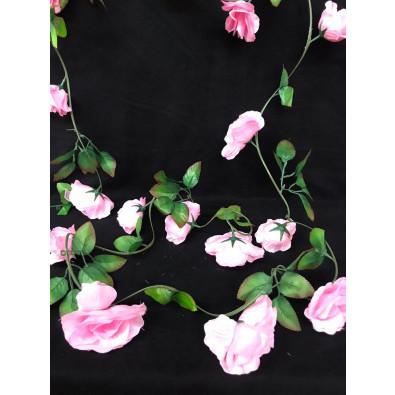 Guía Rosa Grande Rosa Pastel