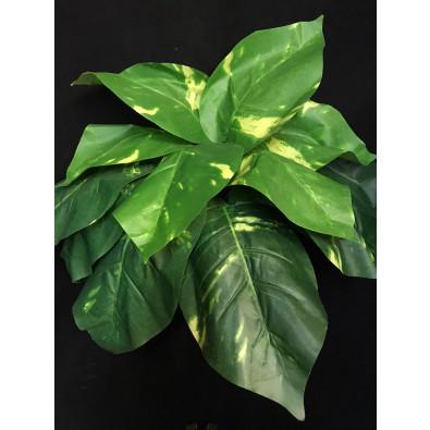 Planta mediana verde