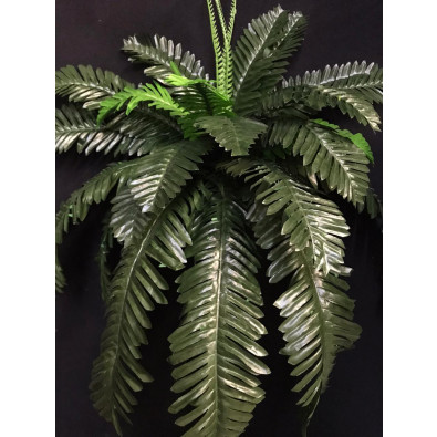 Palma cica grande verde
